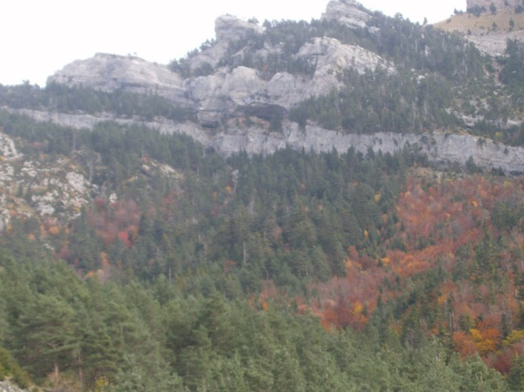 Otoño en el Pirineo Aragonés