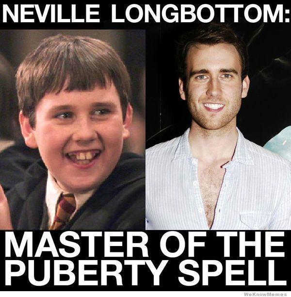 Harry Potter Memes Only A True Potterhead Can Understand Part 4 Neville Longbottom Matthew Lewis Harry Potter