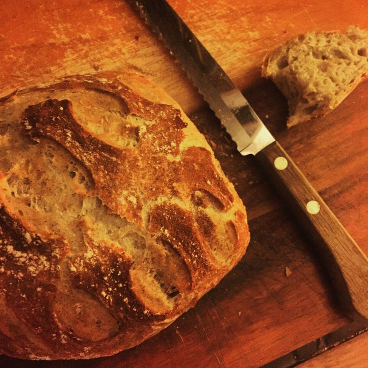 Cast iron Dutch oven - crusty bread 3 cups flour 1/2 cup ...