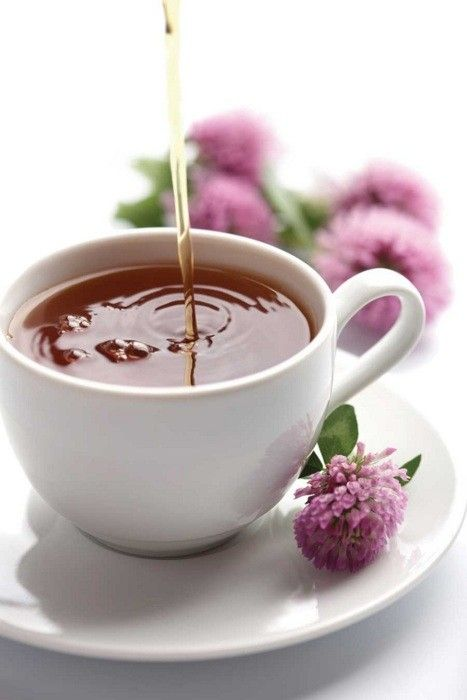 <3red clover tea time
