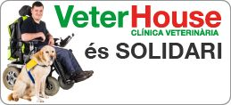web veterhouse-13 3