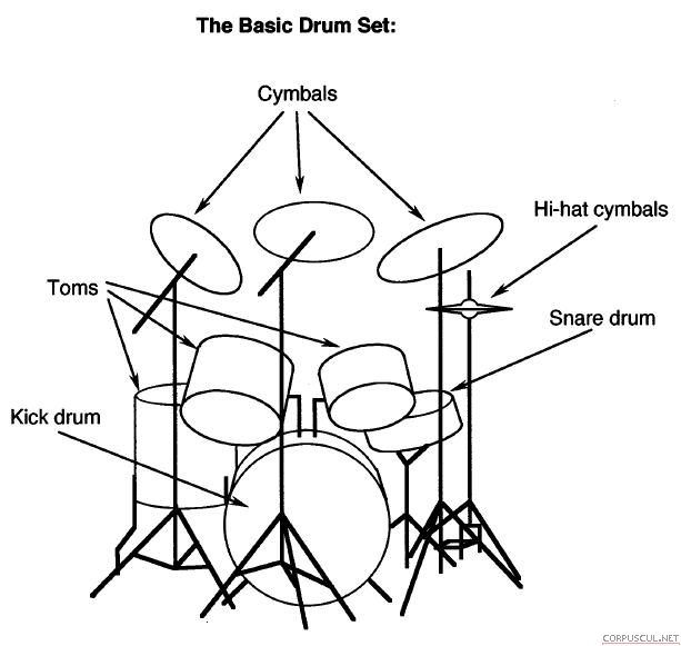 1000+ images about Drum on Pinterest