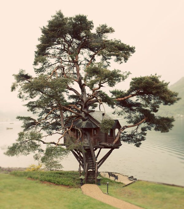 ahhhh . . . tree house with a view!!!: Spaces, Favorite Places, Tree Houses, Dream House, Trees, Lake, Homes, Treehouses, Lodge