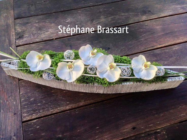 Artist Stephane Brassart