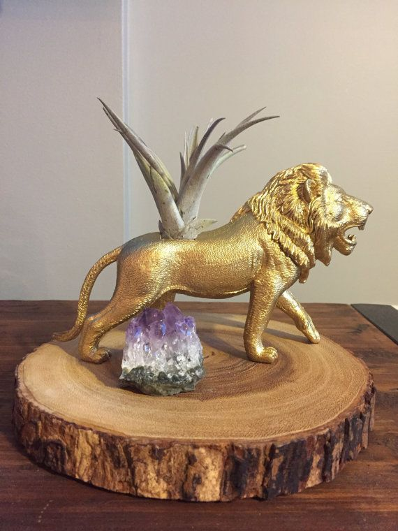 Large Gold Lion Planter with Air Plant Included! We ship both the planter and the air plant. Perfect for your home, your desk at the office, or even a great addition to your dorm room! DETAILS: -Each planter is triple coated with paint - Air plants will vary; you may not get the same air plant shown in this photo -A Care Instruction card is included with every purchase SHIPPING INFO: Plants are living and are sensitive to heat and cold. Please have your package delivered to an address that…