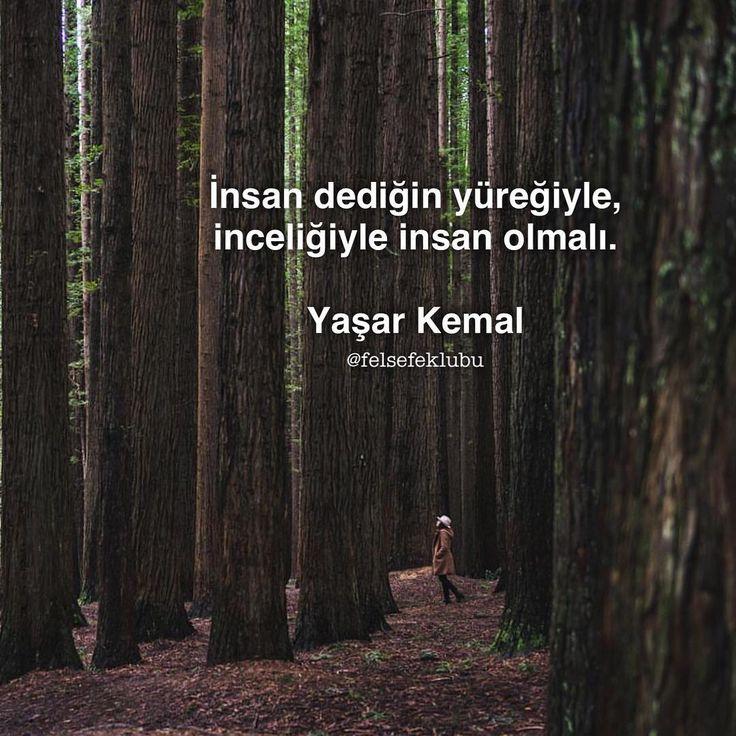 #yasarkemal
