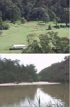 Upper Colo Reserve, Hawkesbury