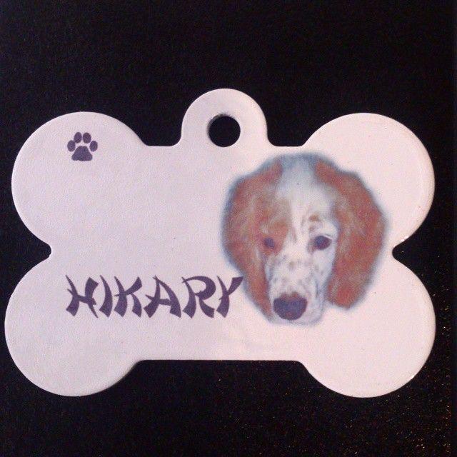 Placa con foto de su mascota.   #PlacasParaMascotas #Gatos #Blanco #Bogota #Nombre #Mascotas #Perros #Cachorros #Perritos #Hueso #Foto