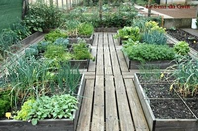 I love the paths between the beds. You could maybe use pallets. julieratz