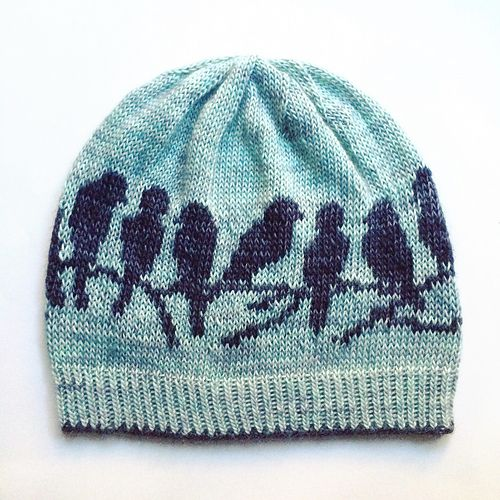 Ravelry: ericamay's ave hat