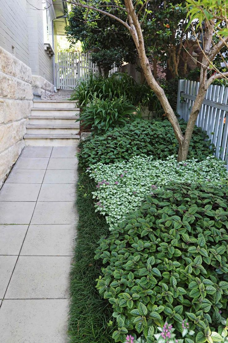 side-garden-pavers-may15