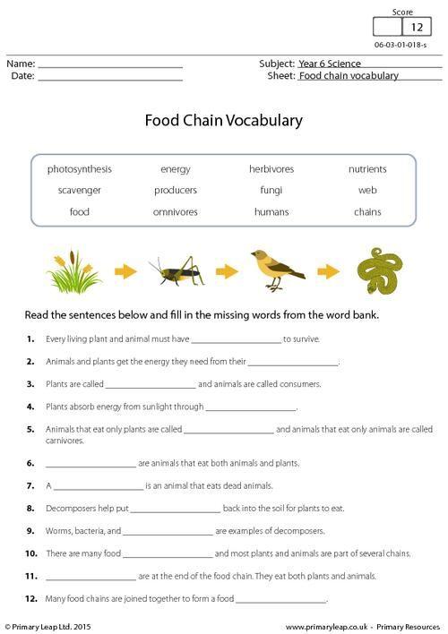 Resume Activity Worksheet – Resume Worksheet