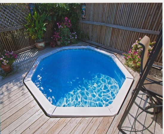 Just A Teeny Tiny Pool My Secret Garden Pinterest Pools Doggie Pool And Backyards