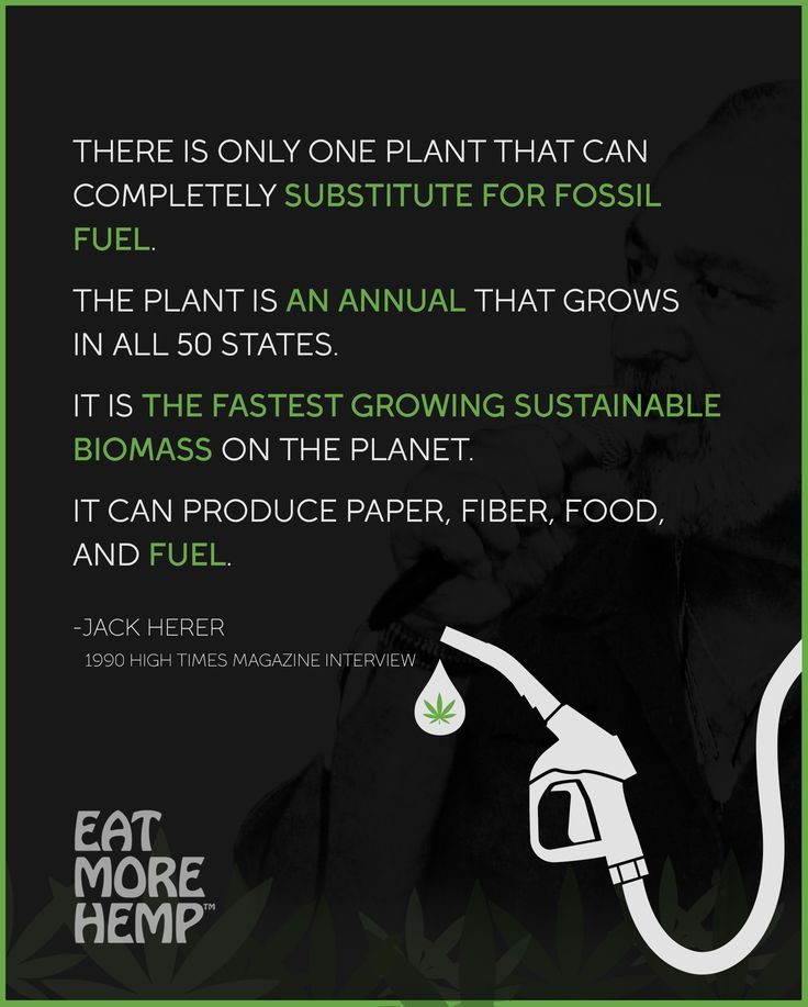 Hemp Biofuel Could Ease Our Dependence On Fossil Fuels