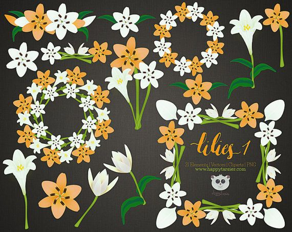 Lilies 01 Flowers Floral Vector Graphics Clipart by HappyTarsier