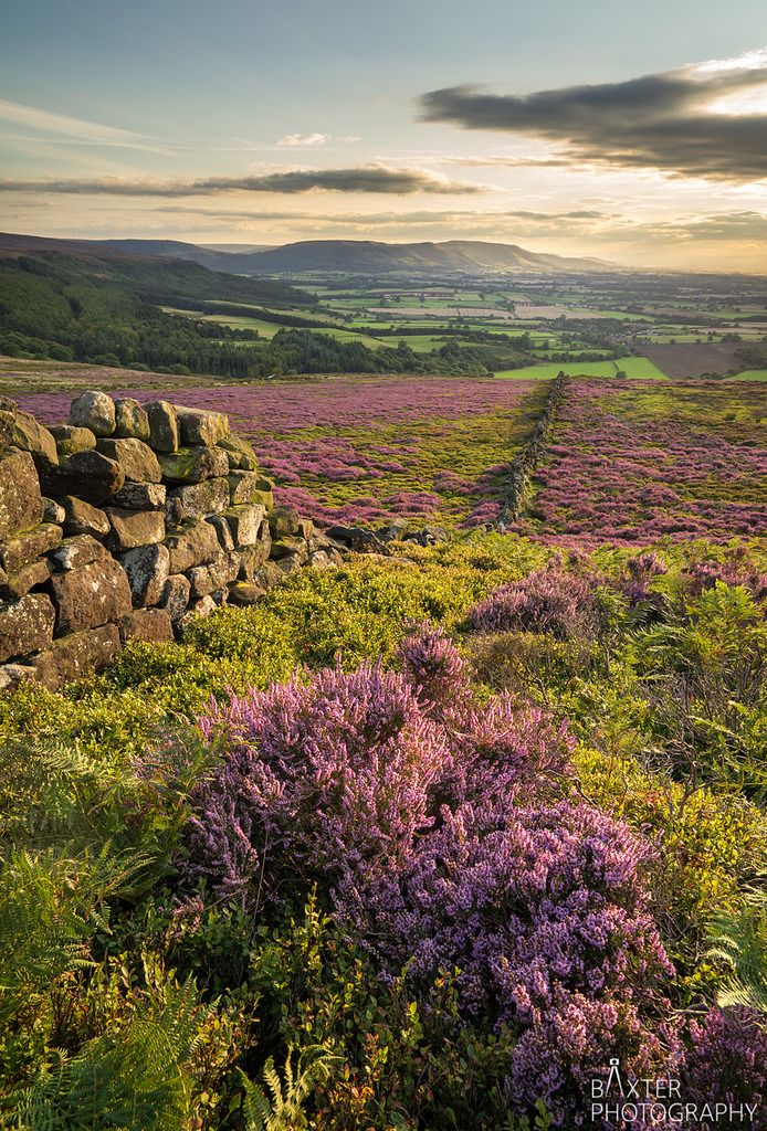 Fading light on Park Dale, Yorkshire Dales, England by baxter.photos