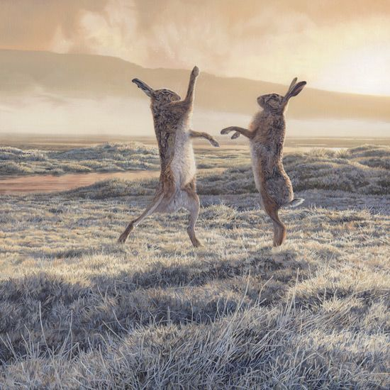 Boxing Hares Prints by Martin Ridley