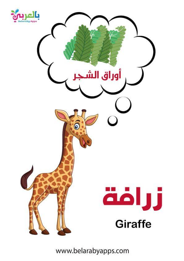 بطاقات أسماء حيوانات الغابة بالصور وحدة الحيوانات رياض اطفال بالعربي نتعلم In 2021 Giraffe Cartoon Fictional Characters