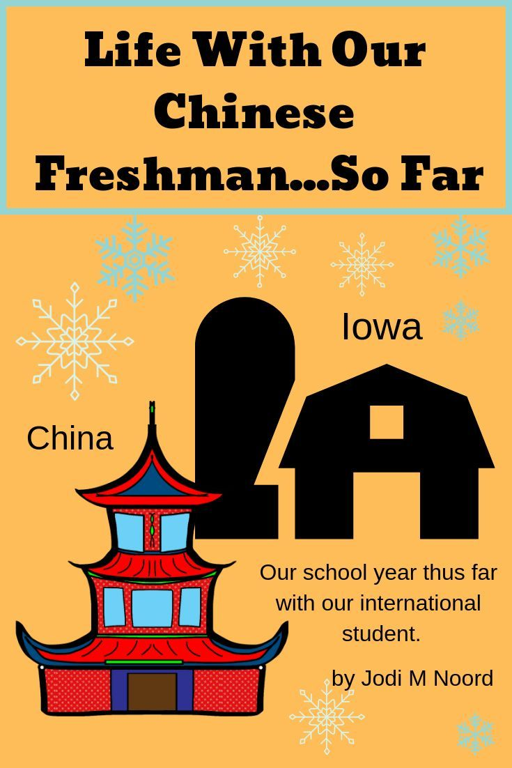 Life With Our Chinese Freshman by Jodi M Noord | Blog Writings