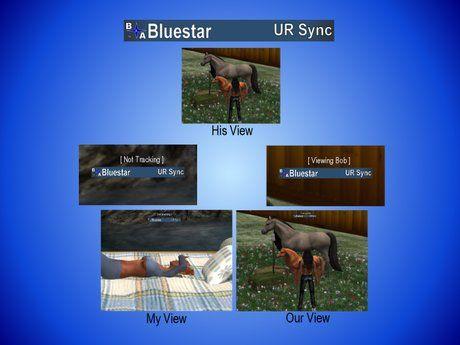 UR Sync HUD (Boxed)