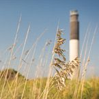 Ocean Isle Beach, NC | NC Brunswick Islands | Official Tourism Site