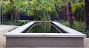 Zwemvijver Jaap Sterk. Voorin bij het stenen trapje heb je schoon water en achterin vind je moeras. Als je op een warme dag verkoeling zoekt, kun je het water inlopen. (6x2m, 1.20 m diep)