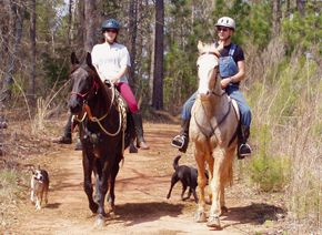 You Can Build a Horse Trail Don't want to buy a trailer to go places? Do you prefer to ride close to your home or maybe you would like to connect to a local trail system? Many owners of horse properties intend to construct horse trails on their own land or want to connect with a private or public trail system.