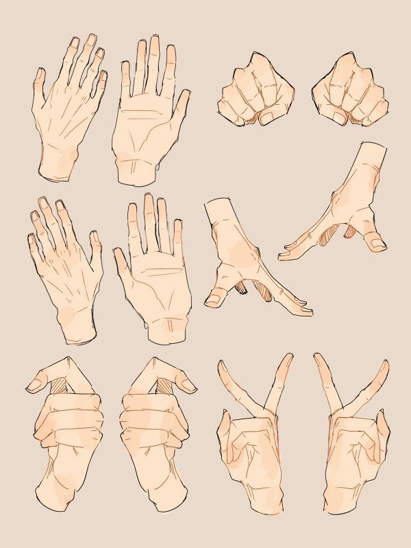 Foᒪᒪoᗯ Á—°É› Á'Žoᗯ Tran Jang In 2021 Hand Drawing Reference Art Reference Photos How To Draw Hands Peacesign drawings on paigeeworld pictures of anime hankering the anime wallpapers in hd. hand drawing reference