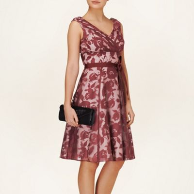 Phase Eight Claret and Cream barbara burnout dress- at Debenhams.ie