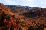 Piatra Craiului Romania