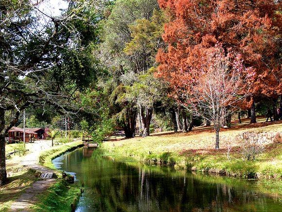 A belíssima paisagem do Horto Florestal combina com um piquenique romântico.