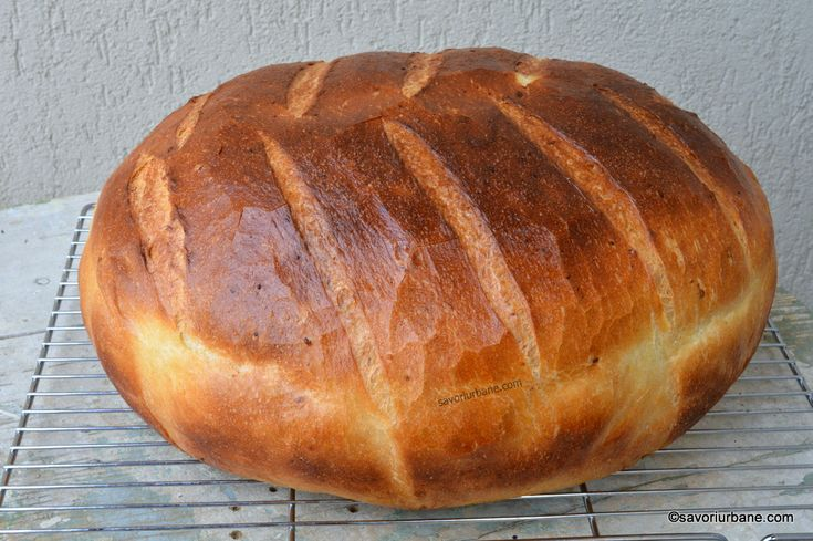 Paine cu cartofi coapta in oala reteta ardeleneasca. O paine taraneasca cu cartofi extrem de pufoasa, cu coaja subtire si crocanta, care nu se sfarma si
