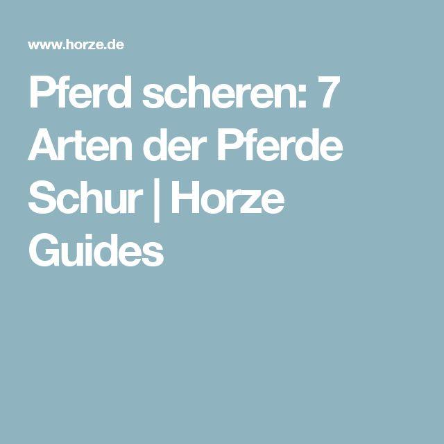 Pferd scheren: 7 Arten der Pferde Schur |Horze Guides