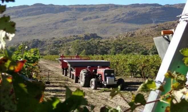 Interesting wine estates to visit in South Africa - Du Toitskloof Wines... The name De Wetshof has been synonymous with the production of fine wines in South Africa since the 1970's. As the first registered wine estate in the Robertson Wine Valley, De Wetshof has become known internationally as South Africa's eminent Chardonnay House due to the pioneering role it played in introducing this noble Burgundian grape to the country.... #wine #southafrica #wine estate #tourism #extremefrontiers…