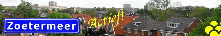 Zoetermeer Actief - social media adviseur, ad hoc redacteur vrijwillig 2012-heden