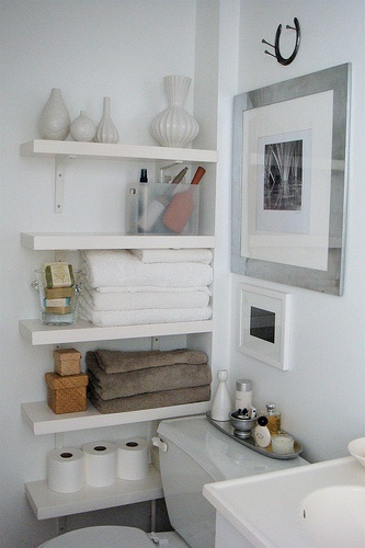 Trying to decide if I should hang shelves like this in our bathroom or shelves over the toilet?