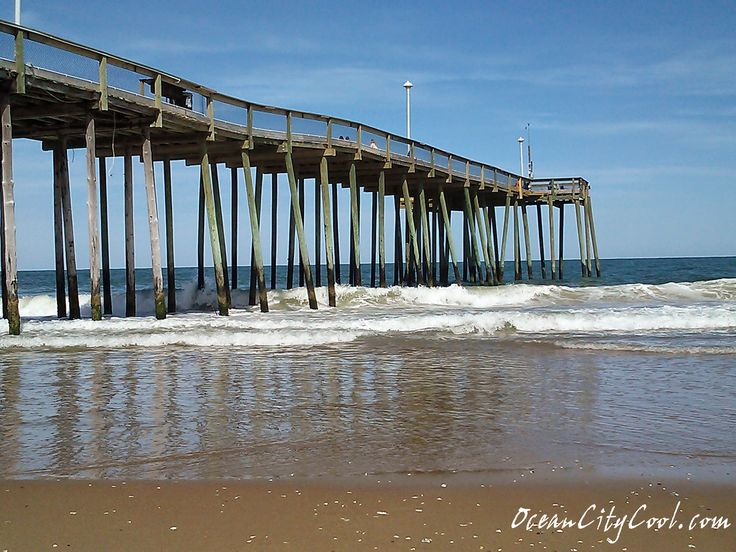 1000 images about ocean city fishing pier ocean city md for Oceanic fishing pier