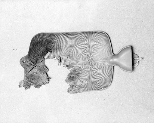Hotwater bottle, one of the objects from Cornelia Parker's installation Cold Dark Matter: An Exploded View