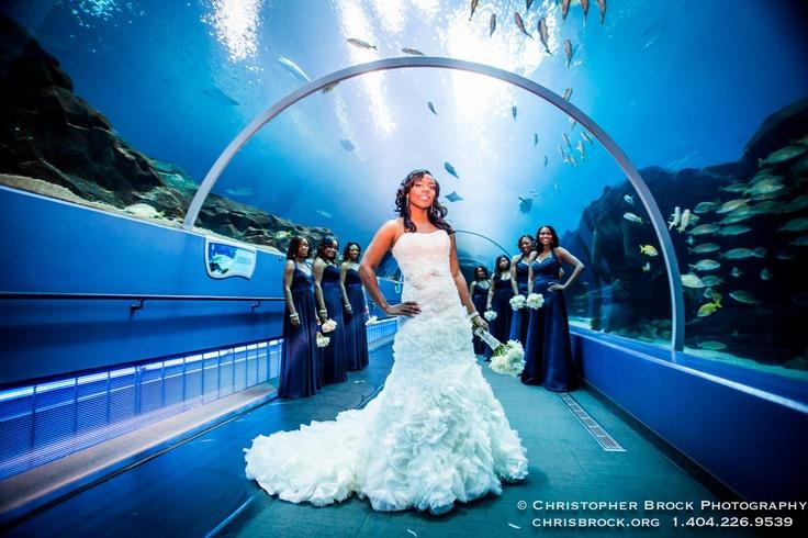 Atlanta Aquarium Wedding Photography by Christopher Brock ...