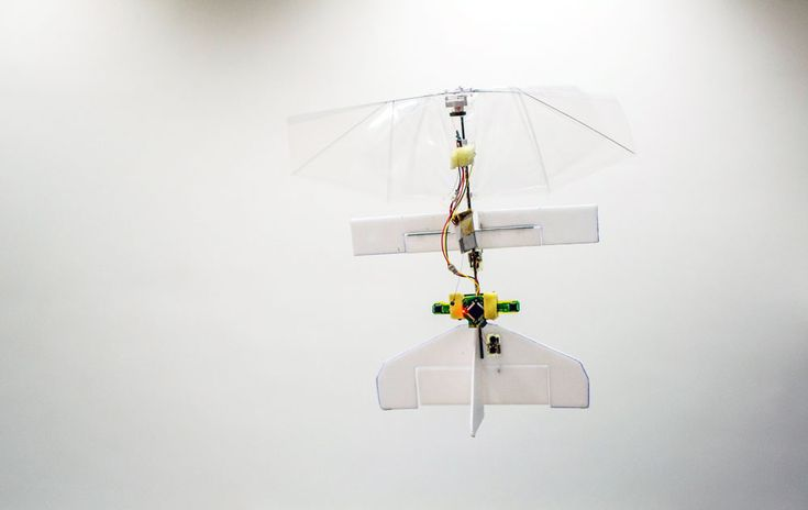 Fully autonomous flapping-wing micro air vehicle weighs about as much as 4 sheets of A4 paper