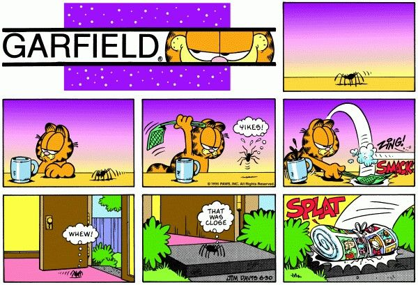 Pin by Marianne Horton on Sunday comics   Garfield comics, Garfield  cartoon, Fun comics