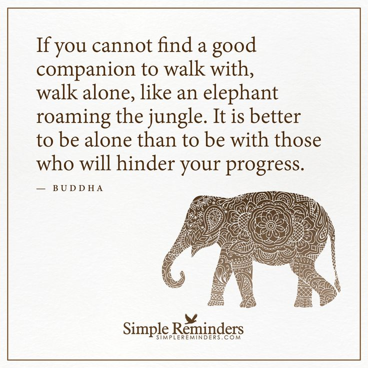 Walk alone If you cannot find a good companion to walk with, walk alone, like an elephant roaming the jungle. It is better to be alone than to be with those who will hinder your progress. — Buddha