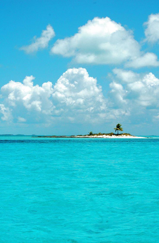exuma, bahamas : norman's cay