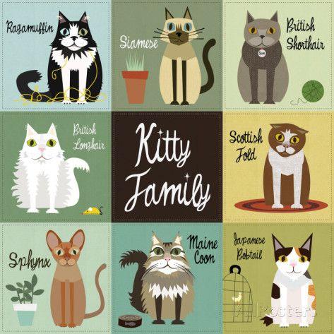 Kitty Family Prints by Jenn Ski at AllPosters.com
