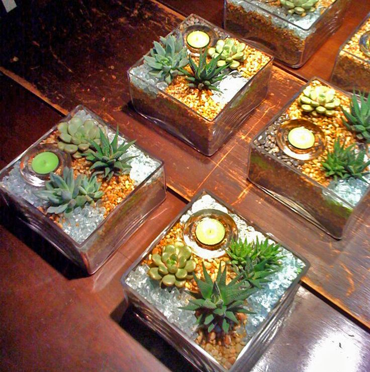 Succulent Wedding Centerpieces Planted Containers
