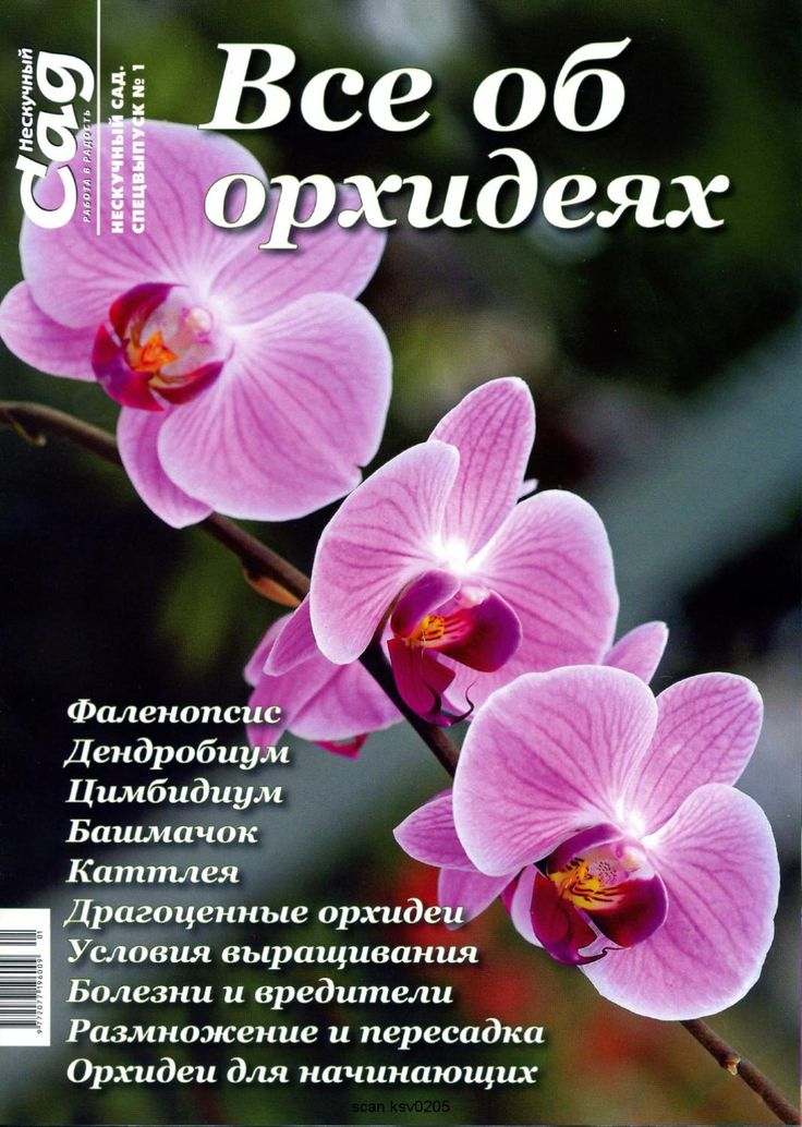 Нескучный сад №1 2012 by Надежда Медведева - issuu