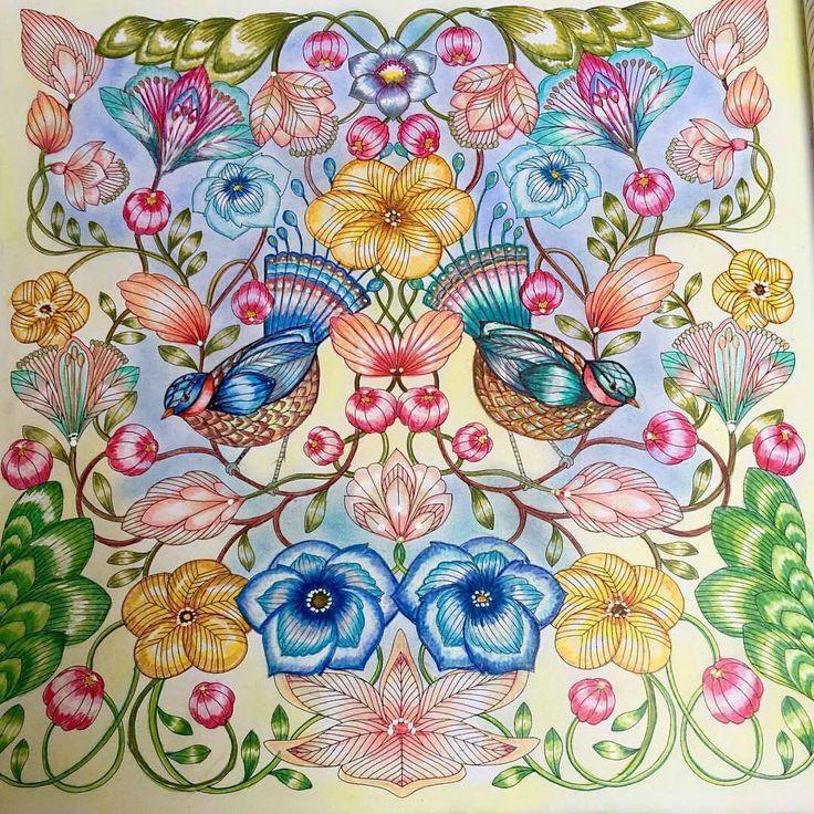 Animal Kingdom Coloring Book Instagram 391 Best Color Millie Marotta Images On