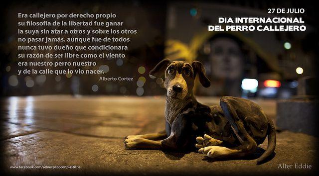 Día del perro callejero (Alter Ellie - El Espectador/Colombia)