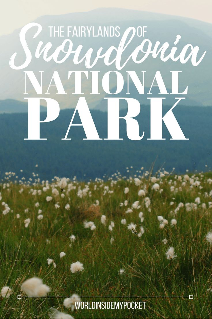 The Fairylands of Snowdonia National Park | World Inside My Pocket