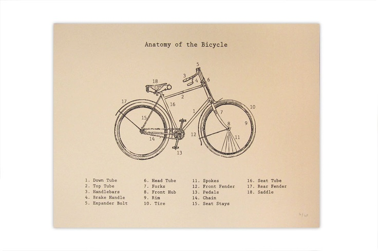 Fresh off the Press at Kid Icarus, our Anatomy of the Bicycle is great print for any bicycle lover!